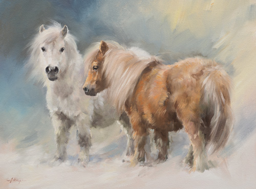 Christmas Horse Pictures.Shetland Ponies Christmas Card